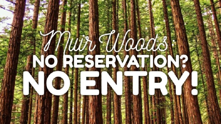 WARNING: Muir Woods Reservations Required Now